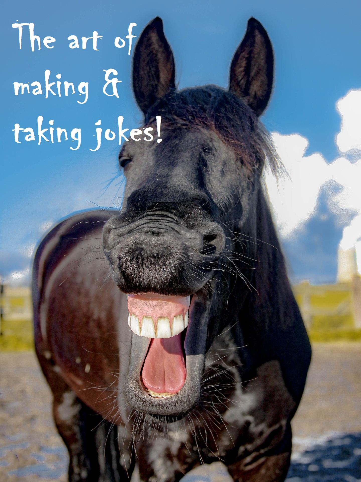 comedian comedy joke